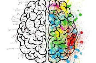 что думает мозг