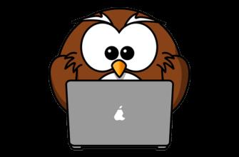 деловая сова